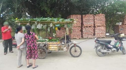 Sạp rau đặc biệt gây sốt mạng vì có cách bán hàng quá cao tay, ai thấy cũng phải vào mua - 2