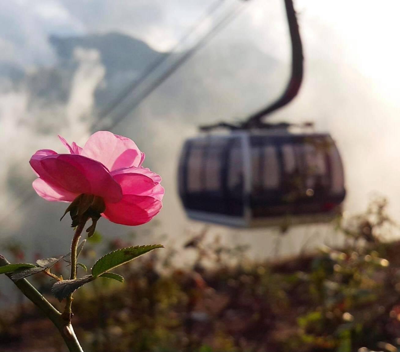 Du lịch Sa Pa khởi sắc, lượng du khách tăng tới 163% - hình ảnh 1