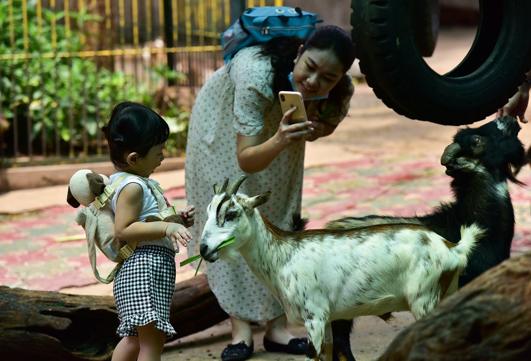 Người dân ùn ùn đi chơi lễ, toát mồ hôi chờ mua vé vào cổng Thảo Cầm Viên - hình ảnh 10