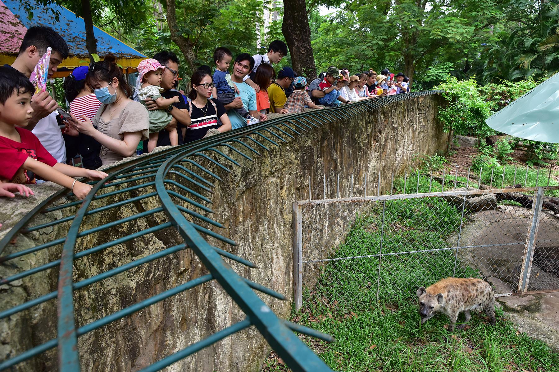 Người dân ùn ùn đi chơi lễ, toát mồ hôi chờ mua vé vào cổng Thảo Cầm Viên - hình ảnh 11