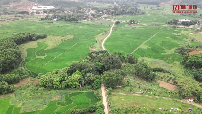 """Bí ẩn cây """"ma làng"""" hơn 800 tuổi ở Hoà Bình - 1"""