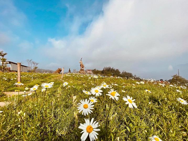 Chớm hè, cùng ngắm vẻ đẹp lãng mạn của thung lũng Mường Hoa và đỉnh Fansipan - hình ảnh 1