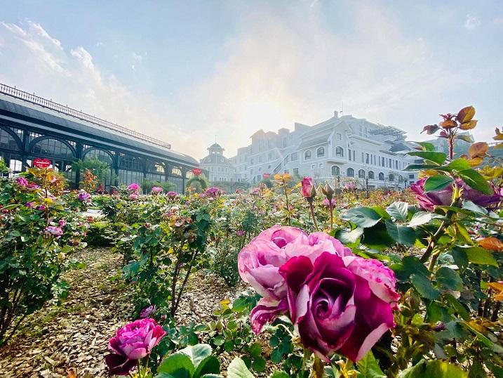 Chớm hè, cùng ngắm vẻ đẹp lãng mạn của thung lũng Mường Hoa và đỉnh Fansipan - hình ảnh 5