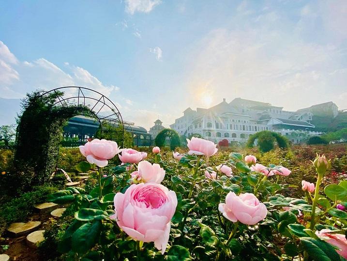 Chớm hè, cùng ngắm vẻ đẹp lãng mạn của thung lũng Mường Hoa và đỉnh Fansipan - 7