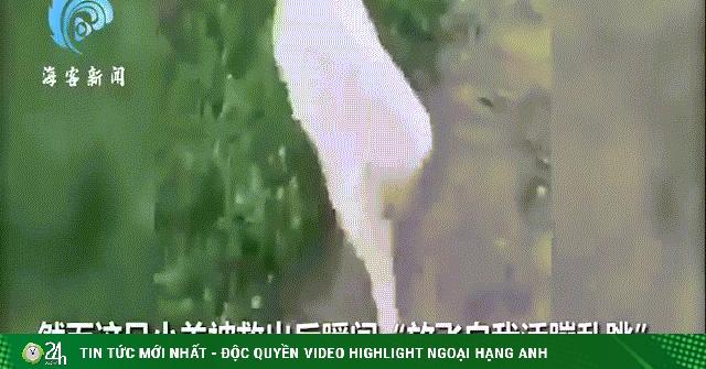 Video: Vừa được cứu khỏi mương nước, chú cừu ngay lập tức có hành động làm ai nấy cạn lời