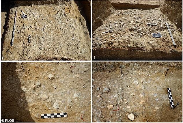 Phát hiện công cụ đá kỳ lạ trong mỏ vàng cách đây 1 triệu năm - hình ảnh 3