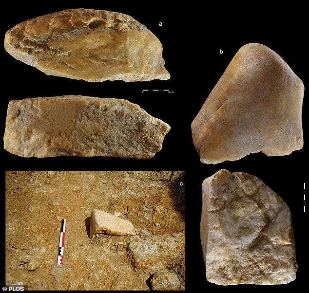 Phát hiện công cụ đá kỳ lạ trong mỏ vàng cách đây 1 triệu năm - hình ảnh 4