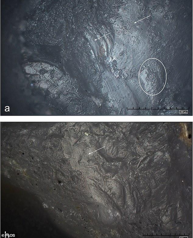 Phát hiện công cụ đá kỳ lạ trong mỏ vàng cách đây 1 triệu năm - hình ảnh 5