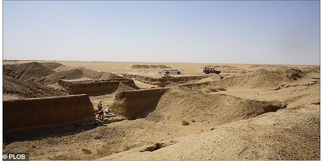 Phát hiện công cụ đá kỳ lạ trong mỏ vàng cách đây 1 triệu năm - hình ảnh 1