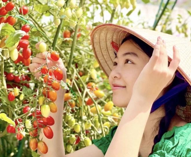 Con gái MC Quyền Linh cao 1,7m xinh như hoa hậu, fan nô nức xin làm rể - 4