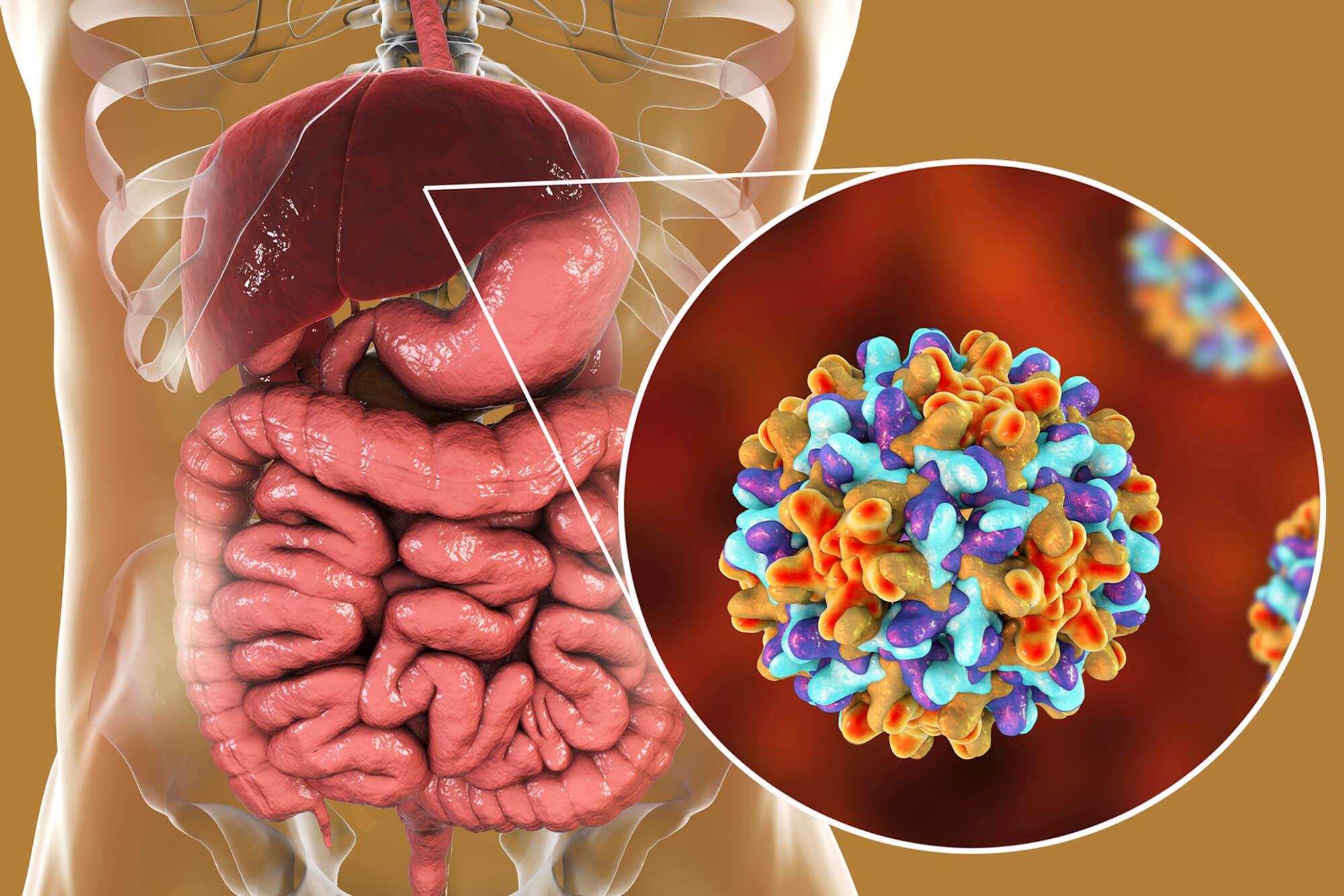 Đẩy lùi ung thư gan bằng những thói quen vô cùng đơn giản - 1