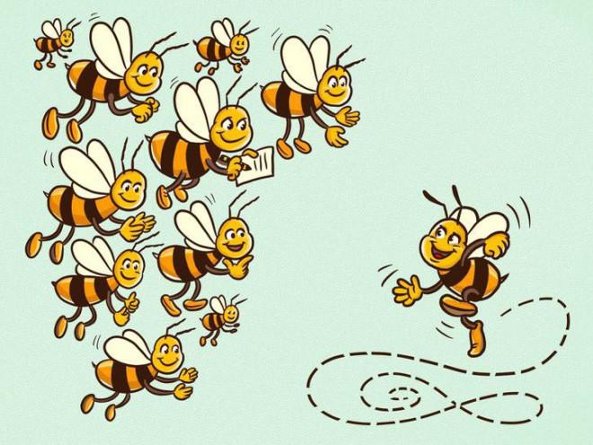 Khi phải đối mặt với khó khăn, hãy suy nghĩ như một con ong - 5