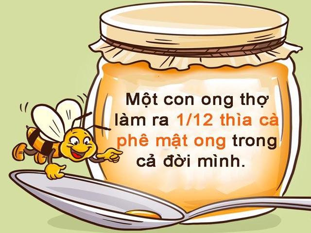 Khi phải đối mặt với khó khăn, hãy suy nghĩ như một con ong - 6