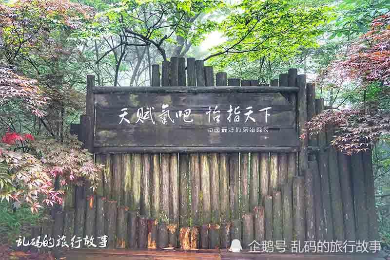 """Khu nghỉ mát được ví như """"Xứ sở thần tiên đẹp nhất Trung Quốc"""" - hình ảnh 4"""
