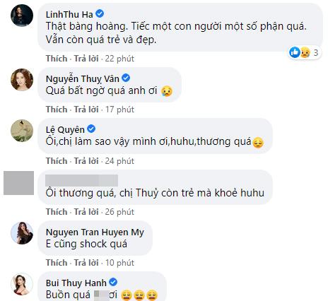 Hoa hậu VN Nguyễn Thu Thủy qua đời do đột quỵ khiến showbiz Việt bàng hoàng - hình ảnh 4