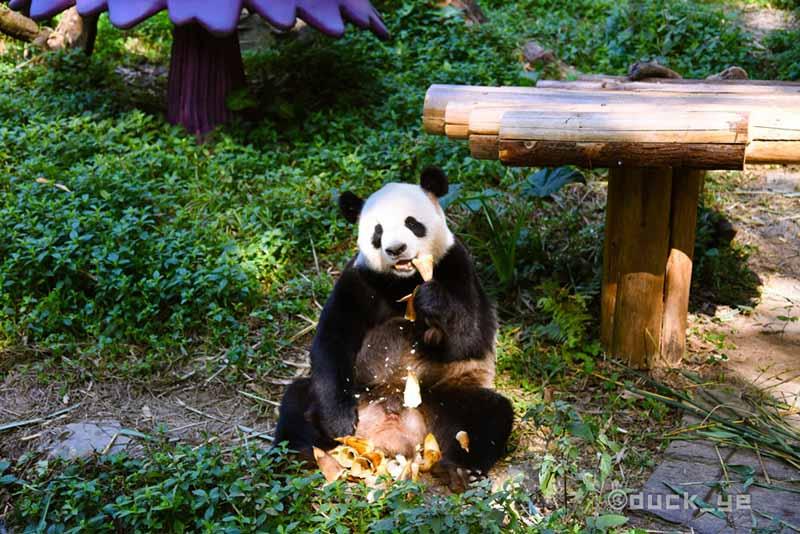 3 công viên giải trí lớn ở Trung Quốc, bạn đừng bỏ qua khi đến đây du lịch - hình ảnh 5