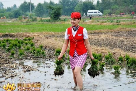 """Nữ sinh Biên Hòa diện bodysuit đi gặt lúa bị nhận xét """"trang phục sai khung cảnh"""" - 6"""