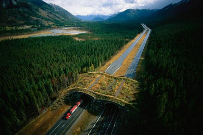 Ngắm phong cảnh thiên nhiên đẹp mê hồn khắp thế giới - hình ảnh 2