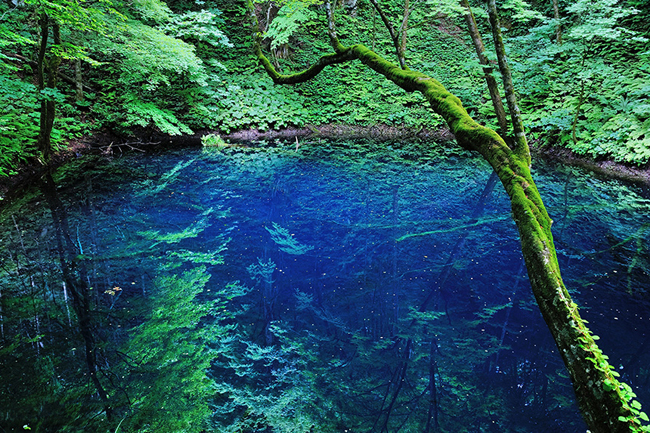 12 di sản thiên nhiên đẹp ngoạn mục nhưng ít người biết tới - hình ảnh 3