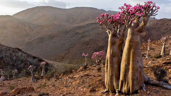 12 di sản thiên nhiên đẹp ngoạn mục nhưng ít người biết tới - hình ảnh 6