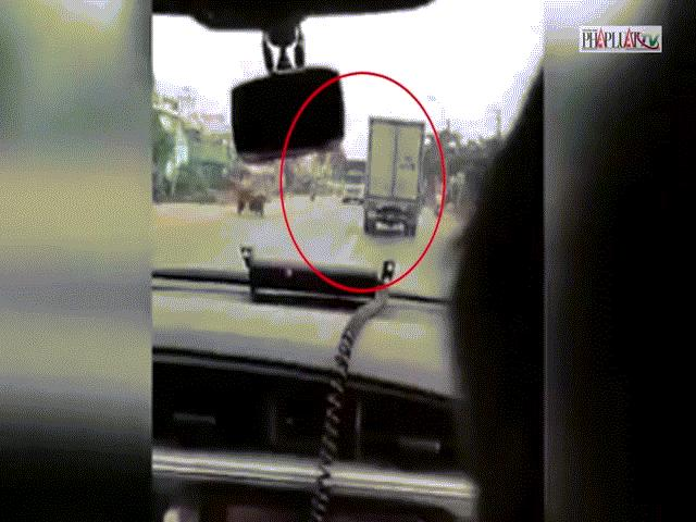 Clip: CSGT truy đuổi 100 km bắt kẻ trộm xe đông lạnh