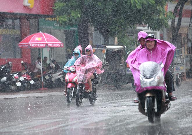 """Người Hà Nội sung sướng đi dưới """"mưa vàng"""" sau những ngày nắng cháy da - 1"""