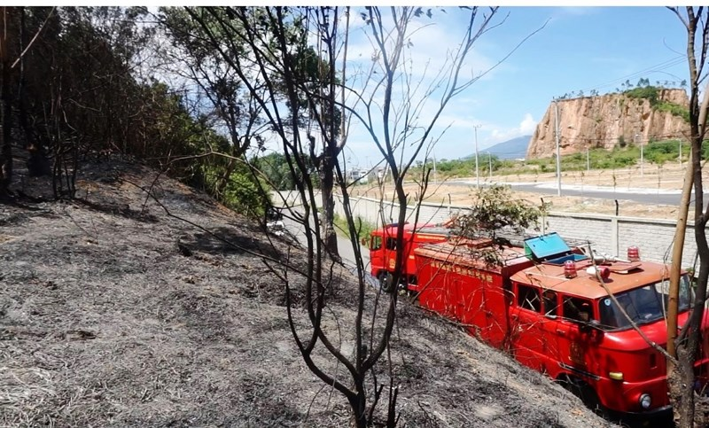 Hàng trăm người chữa cháy rừng dưới cái nắng 40 độ - 1
