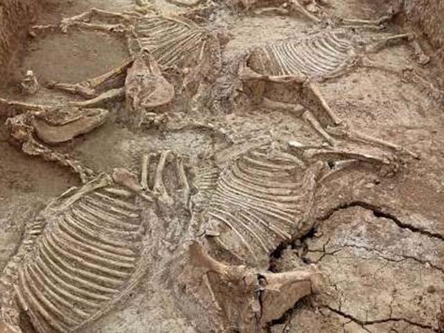 Giải mã bí ẩn hàng chục mộ cổ gần 3.000 năm tuổi ở Trung Quốc