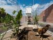 Qua tay kiến trúc sư, chuồng gà Việt cũng được báo Tây khen nức nở