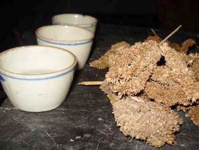 Sơn hào hải vịcũng chẳng bằng 15 đặc sản ngon sôi sục dạ dày của Hà Giang - 16