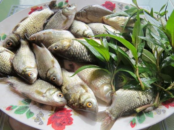 4 món ăn từ cá cải thiện ham muốn cho quý ông - 1