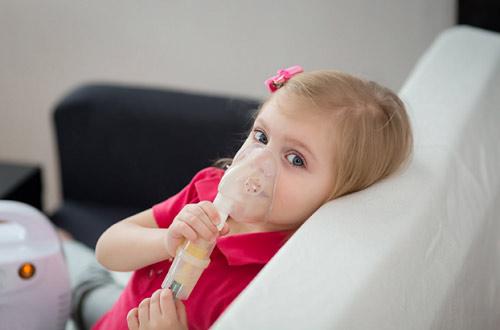 Xuyên bối mẫu – Cứu tinh cho những bệnh nhân hen suyễn - 3