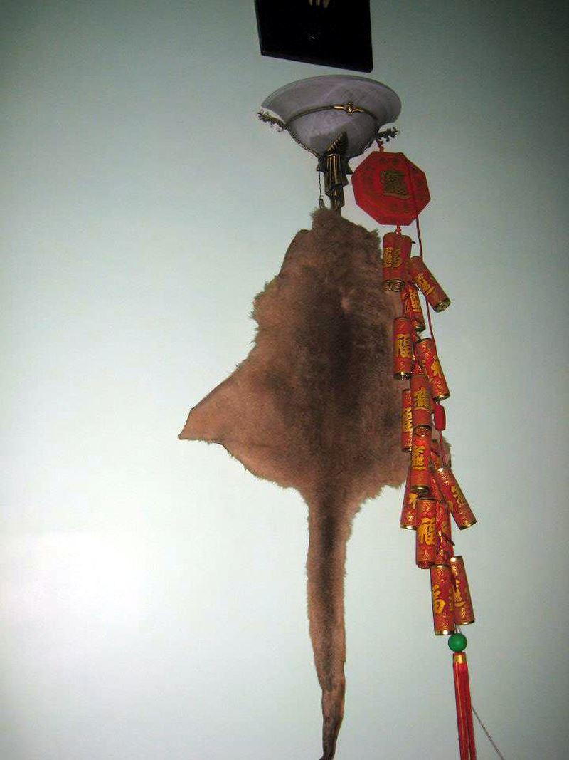 Quá khứ cơ cực đi thồ hàng, vác đá của 3 đại gia Vân Dung, Chiến Thắng, Quang Thắng - hình ảnh 17
