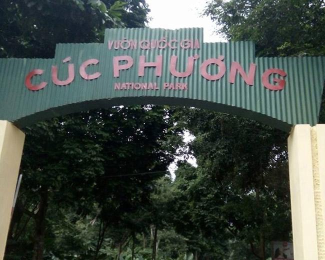 Bỏ túi tất tần tật kinh nghiệm du lịch sinh thái Tràng An Ninh Bình - 5