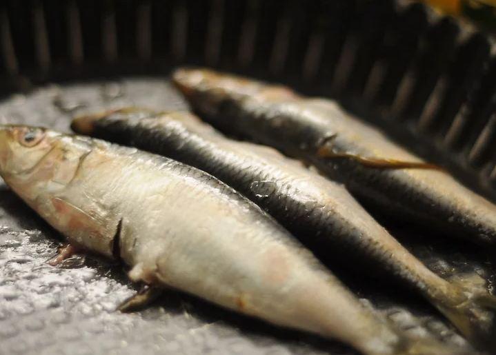 Bí quyết chọn cá tươi ngon, không sợ mua nhầm cá ươn - 7