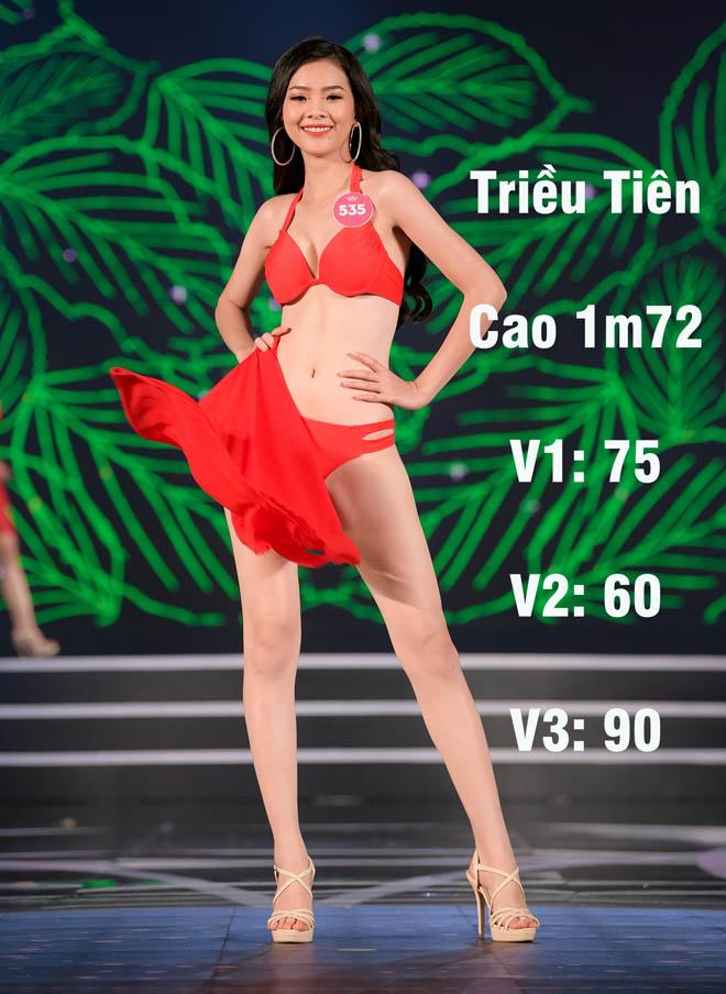 Loạt người đẹp Hoa hậu VN có vòng 1 khiêm tốn nhưng đủ chuẩn đẹp mới - hình ảnh 3
