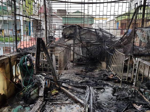 Cháy nhà 3 tầng giữa trưa, 30 con chó bị thiêu chết