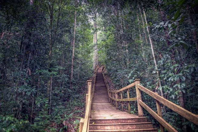 Khách du lịch châu Á ùn ùn kéo đến Brunei để chiêm ngưỡng những địa danh này - hình ảnh 2