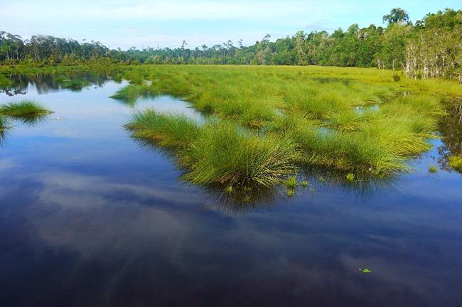 Khách du lịch châu Á ùn ùn kéo đến Brunei để chiêm ngưỡng những địa danh này - hình ảnh 12