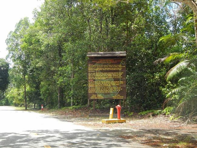 Khách du lịch châu Á ùn ùn kéo đến Brunei để chiêm ngưỡng những địa danh này - hình ảnh 15