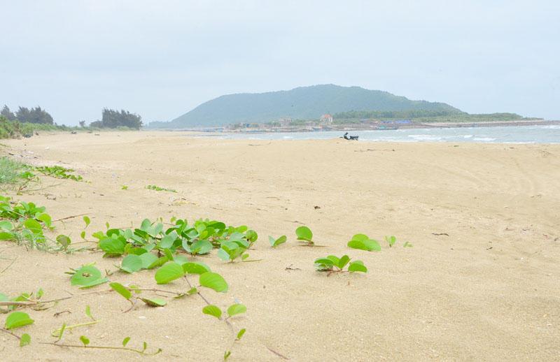 Đảo Vĩnh Trung – địa điểm mới cho những ai thích sự huyền bí và rùng rợn! - hình ảnh 5