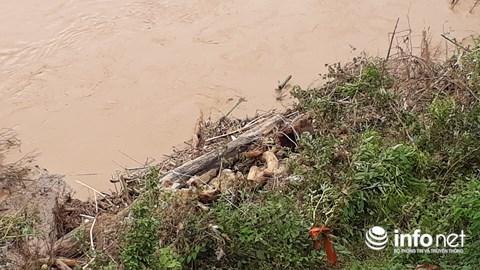 Thanh Hóa: Thót tim trước cảnh người dân đổ xô đi vớt củi giữa dòng nước dữ - hình ảnh 12