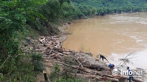 Thanh Hóa: Thót tim trước cảnh người dân đổ xô đi vớt củi giữa dòng nước dữ - hình ảnh 3