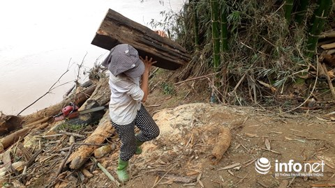 Thanh Hóa: Thót tim trước cảnh người dân đổ xô đi vớt củi giữa dòng nước dữ - hình ảnh 5