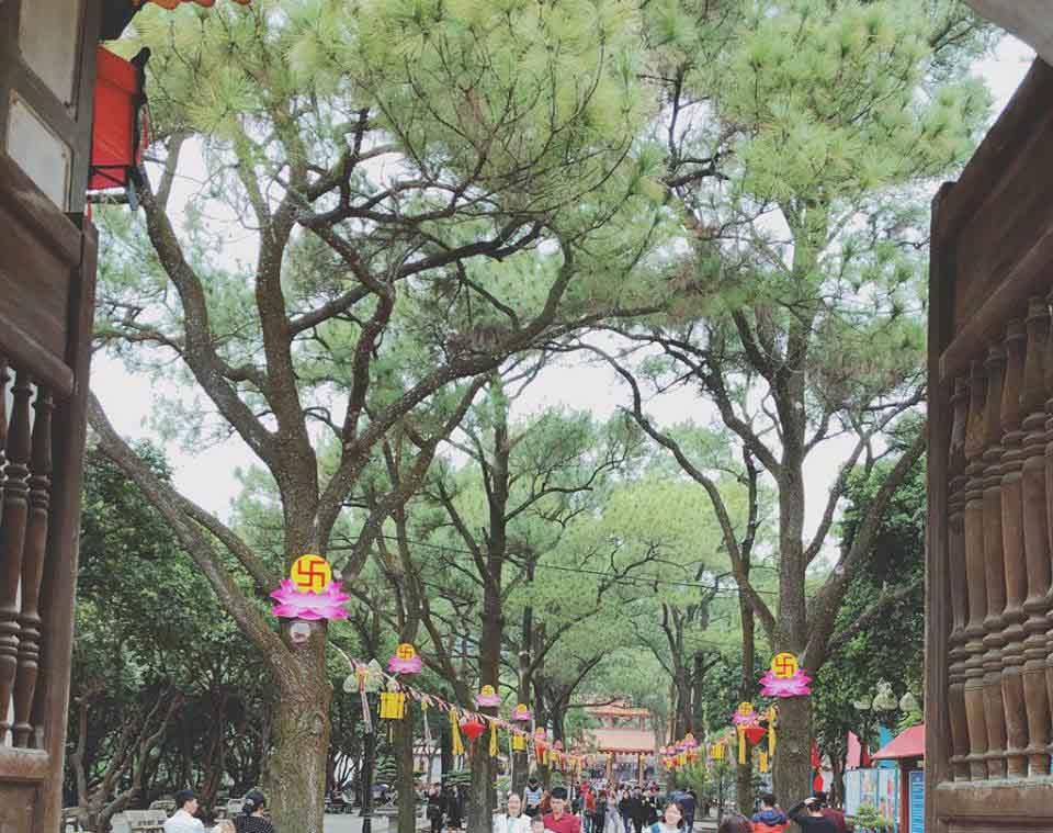 Đến chùa Côn Sơn thưởng lãm danh thắng tuyệt vời của xứ Đông - hình ảnh 2