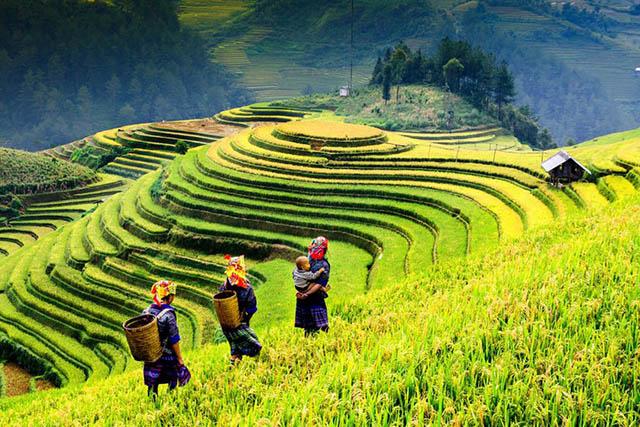 15 địa điểm đẹp nhất Việt Nam, bạn đã check in được bao nhiêu nơi rồi? - hình ảnh 2