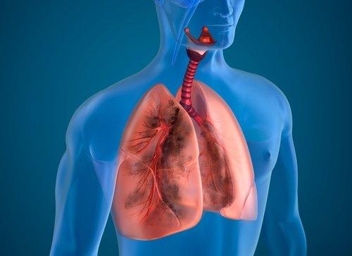 10 cách giúp thanh lọc phổi tự nhiên hiệu quả - 1