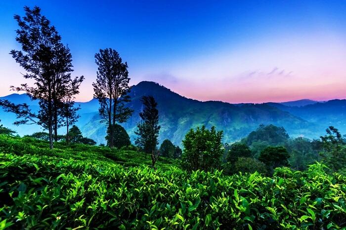 Tháng 10 đi du lịch, đừng bỏ lỡ những điểm đến tuyệt vời ngay gần Việt Nam này - 11
