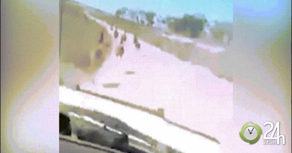 Nam thanh niên lái xe tốc độ cao, đâm chết hàng loạt...