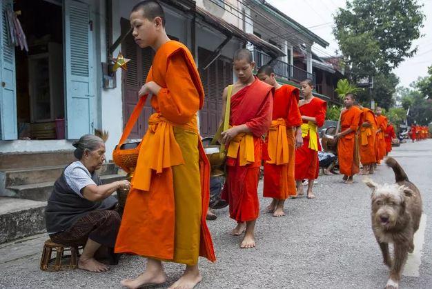 Những điểm đến đẹp nhất Đông Nam Á được UNESCO công nhận có tới 2 cái tên của Việt Nam - 2